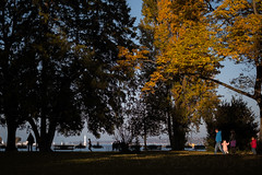 Jardin anglais, Genve (mikaelivanroost) Tags: sunset lake fall automne shadows geneva chiaroscuro clair obscur