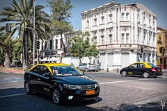 Avenida Brazil I (hapePHOTOGRAPHIX) Tags: chile auto wood santiago plant planta southamerica car grove taxi transport pflanze automotive bosque palmtree holz palmera palme cl vegetal fahrzeug santiagodechile automobil pkw bosk amricadelsur sdamerika avenidabrazil reginmetropolitana gehoelz hapephotographix fujix100t 152chl