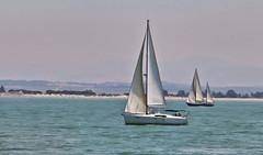 Veleros (orozco-fotos) Tags: espaa spain sailing tokina1224 cdiz orozco sailingship velero rota nikond90 sigma18250 corozco orozcofotos summer2015 verano2015