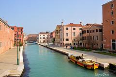 The Other Face of Venice!! (LizasGarden) Tags: sea music beauty joy culture happiness tradition gondolas lizasgshots lizaetnicolasinvenice