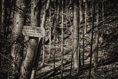 Old Long Trail (michael.mckennedy) Tags: old sign vermont hike trail vt lt trailsign westbolton hking