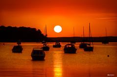 Sunset over Poole Harbour. (_Anathemus_) Tags: uk sunset silhouette coast boat nikon harbour yacht dorset d750 sandbanks 70200mm