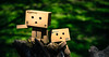 Climbing Danboards (andiihsandi) Tags: park macro tree nature forest toy toys starwars nikon force kitlens planet stormtrooper land bests danbo firstorder hottoys toyphotography danboard d5200