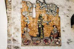 Mosaico Como (antoniosimula) Tags: street urban como photo mosaico autofocus nikond3200 allaperto tamaron d3200 tamaron70300