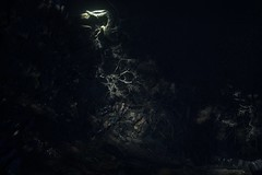 Light for the dead (Aphersis) Tags: darksouls reshade darksoulsiii