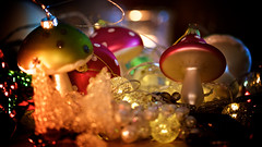 Until next year.... (jayneboo) Tags: christmas decorations tree mushroom lights glow bokeh over pack finished toadstool jewels day6 gems odc 366