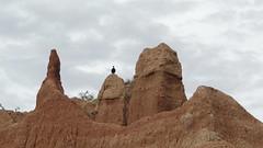 Al asecho (Jhonstuar) Tags: colina carroero tatacoa alasecho desiertolatatacoa