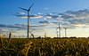 Turbines (steffen_hdf) Tags: summer field landscape nikon sommer feld 5100 landschaft hdr turbines windturbines windkrafträder