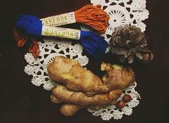 Ginger (Ozherelyeva_I) Tags: thread ginger lace stillife pinecone threads