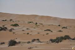 3-Oman-Desert-Marathon-Day-6_7216