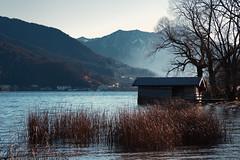 Bad Wiessee (joseph_donnelly) Tags: morning mist lake fog germany bayern deutschland bavaria see nebel boathouse tegernsee boothaus badwiessee latierraunparaiso
