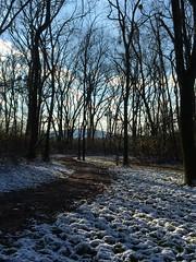 John Hunt Run - Jan 2016 (ShanMcG213) Tags: winter snow huntsville bama alabama running crosscountry trail xcountry hsv trailrunning johnhunt huntsvilleal alabamasnow snowytrails ihearthsv johnhuntrunningpark johnhuntcrosscountryrunningpark huntsvillealsnow
