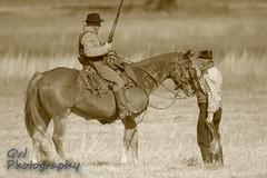 A Visit (H2OJunkie) Tags: horse canon adobe reenactment manfrotto onone civilwarreenactment brooksvilleflorida canon7d gwphotography perfecteffects8 photoshopelements13 sigma150600mmf563dgcontemporary 2016brooksvilleraid