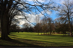 Shadows in the Park,Victoria Park,Aberdeen_feb 16_71 (Alan Longmuir.) Tags: shadow victoriapark aberdeen grampian watsonstreet shadowsinthepark