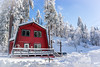 The Red House (lekanne2020) Tags: california travel trees winter red white house snow mountains ice cabin snowstorm redhouse snowfall snowscape bigbear winterscape pintrees bigbearcalifornia