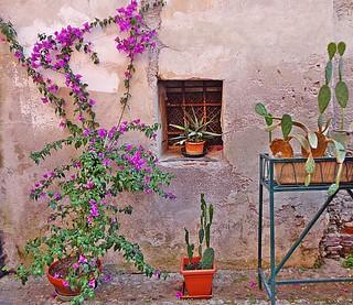 FINALBORGO - (Liguria)