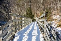 Bridge Cobb Brook 6038.jpg (rayclark1) Tags: bridge usa snow water weather river us vermont place structure jamaica vt