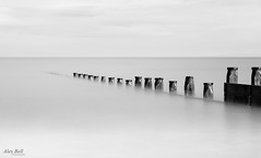 Blyth Groyne (Alex365pix) Tags: sea bw mono seascapes northumberland le groyne blyth northeastcoast nikond610