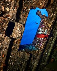 FLA-160220-ND800-7009 (ferlopez) Tags: usa fish underwater moa wreck marinelife wailea boxfish bigeye uu soldierfish mauihawaii wreckdive ostracionmeleagris aweoweo myripristiskuntee epaulettesoldierfish hawaiianbigeye hawaiianspottedboxfish priacanthusmeeki