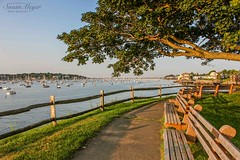 Marblehead Harbor, Fort Sewall-1 (River Bliss Photography) Tags: park sea tree harbor marblehead northshore benches