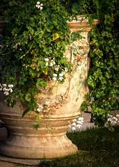 Jarre Anduze (jemazzia) Tags: argile gard cramique poterie jarre anduze