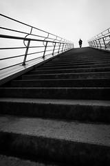0729 (explored) (.niraw) Tags: bw kln treppe schokoladenmuseum mann stufen gelnder berbelichtung strasenfotografie niraw