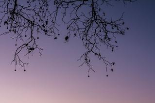 Mi cielo de febrero