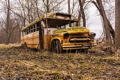 River Bottom Bus (nikons4me) Tags: school bus chevrolet abandoned gm iowa ia 1956 iowariver sonynex7