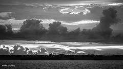 Layers of Clouds (   (Thank you, my friends, Adam!) Tags: morning art clouds lens photography nikon gallery photographer angle florida fine central wide wideangle excellent layers dslr
