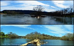 A favorite place (davids_studio) Tags: favorite collage march day place south north fork panoramic 19 nineteen baysmountain 2016 photochallenge holstonriver