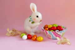 Happy Easter! (Through Serena's Lens) Tags: life rabbit bunny colors easter march still holidays pastel mini cupcake pastels eggs multicolored candies liner happyeaster