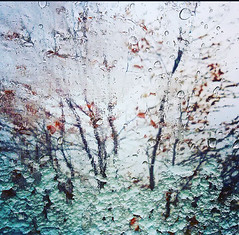 Frozen (leporsoia) Tags: frozen neve freddo ghiaccio