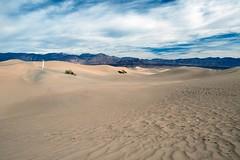 """A Voice in the Wilderness"" (helmet13) Tags: she california woman usa landscape raw desert silence mountians aoi deathvalleynationalpark width peaceaward mesquiteflatsanddunes heartaward platinumpeaceaward d800e level3worldpeacehalloffame"