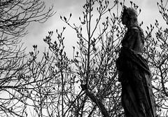 IMG_8982b (Naturecamhd) Tags: nyc newyorkcity sculpture grave graveyard statue canon bronx gothic goth powershot thebronx gravemarker woodlawncemetery thewoodlawncemetery canonpowershotsx60hs sx60hs