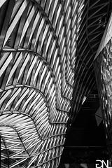 The Wave (noah.gerullis) Tags: city blackandwhite bw architecture germany frankfurt structure architektur myzeil