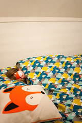 Day 4, Year 9. (evilibby) Tags: sleeping bed sleep sleepy tired fox libby 365 foxes duvet eyemask sleepmask 365days 3659 365days9 foxeyemask foxsleepmask