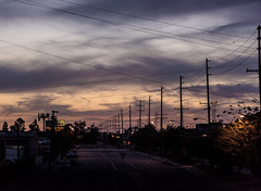 _DO16716 (Edoardo Marino) Tags: city longexposure bridge sunset night port lens harbor nikon longbeach tamron dodi 85 marino sanpedro edoardo vincentthomas d810 edoardomarino