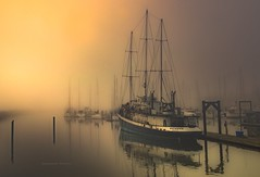 No Need To Rush (jeanmarie shelton) Tags: ocean morning light shadow sky sunlight mist water fog architecture marina sunrise reflections dark landscape outdoors bay boat washington dock nikon ship shadows outdoor serene wastate sailboats waterscape jeanmarie jeanmariesphotography jeanmarieshelton