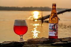 DSC_6411 (vermut22) Tags: beer bottle beers brewery birra piwo biere beerme beertime browar butelka