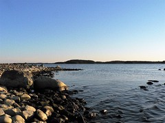 Spring (jaakkohonkasalo) Tags: world ocean sea beach water finland landscape coast seaside outdoor shore ruissalo