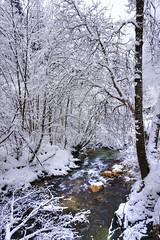 Torrent sous la neige (yoduc73) Tags: montagne hiver neige gorges torrent ballandaz