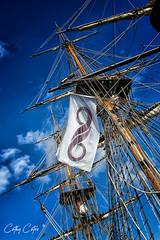 HMB Endeavour Masts (Cathy Cates (aka CrafteeCC)) Tags: sailing endeavour portadelaide boatsships