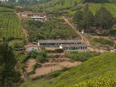 Tea village (Jackie & Dennis) Tags: village kerala teaplantation munnar rwh ramblersworldwideholidays