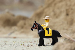 Lone Rider (Jon Christall) Tags: horse canada macro toy spring ranger dof bc lego britishcolumbia police vancouverisland minifig rider blackhorse mountedpolice parkranger horseman 2016 legominifig zeballos