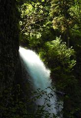 Silver Falls 007