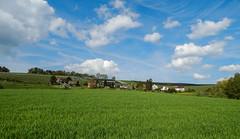 Uesslingen (Haiwehbndner1909) Tags: schweiz switzerland countryside land vin vino wein whine thurgau weinreben uesslingen