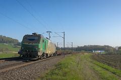 20042016-7371 - SNCF - BB27072 @Barisey-la-Cte (rino54) Tags: france trains prima alstom sncf cheminsdefer britanica bb27000 sncffret autorouteferroviaire