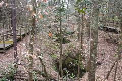 DSC_2685 (Bob Carlson) Tags: park state falling waters