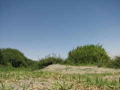 IMG_4212 (motazabdelazeem   ) Tags: sudan rivernile     northernsudan    alkarafab