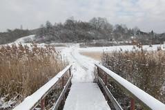 Endlich Schnee! 1 (mellane.karin) Tags: schnee winter snow ammertal